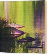 Water Abstract 1 Wood Print