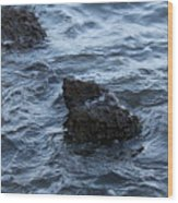 Water And A Rock Wood Print