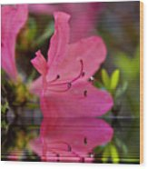 Water Azalea Wood Print