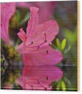 Water Azalea Wood Print