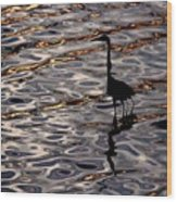 Water Bird Series 17 Wood Print