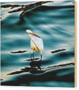 Water Bird Series 33 Wood Print