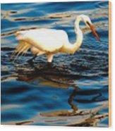 Water Bird Series 34 Wood Print