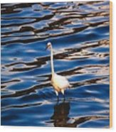 Water Bird Series 9 Wood Print