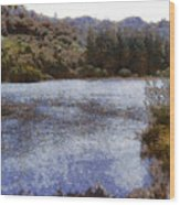 Water Body Surrounded By Greenery Wood Print