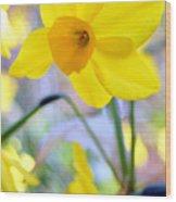 Water Color Daffodil Wood Print