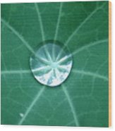 Water Crystal Wood Print