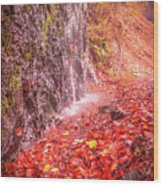 Water Dripping On The Rock Wall Wood Print