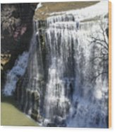 Water Fall In Tennessee  Wood Print