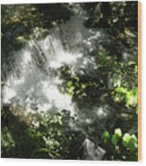 Water Fall In The Woods Wood Print
