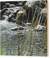 Water Flowing 2 Wood Print