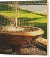 Water Fountain Garden Wood Print