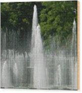 Water Fountain Show - Longwood Gardens In Pa Wood Print