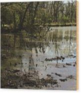 Water Garden Lake View Wood Print