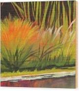 Water Garden Landscape 5 Wood Print