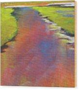 Water Garden Landscape 6 Wood Print