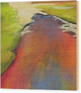 Water Garden Landscape 7 Wood Print