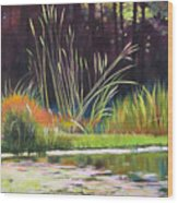 Water Garden Landscape Wood Print by Melody Cleary