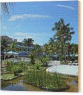 Water Garden Wood Print