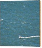 Water Glider Wood Print