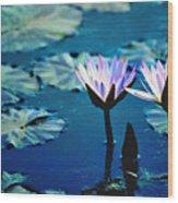 Water Glow Wood Print