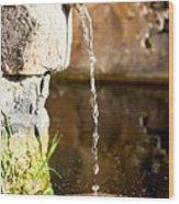 Water In Nature Wood Print