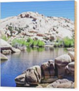Water In The Desert Wood Print