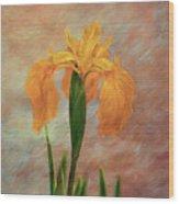Water Iris - Textured Wood Print