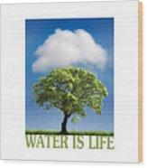 Water Is Life Wood Print