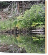 Water Like A Mirror Wood Print