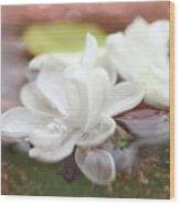 Water Lilac Wood Print