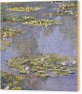 Water Lilies 8 Wood Print