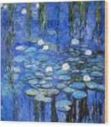 water lilies a la Monet Wood Print