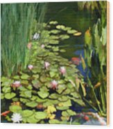 Water Lilies And Koi Pond Wood Print
