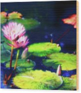 Water Lilies Wood Print by Harry Spitz