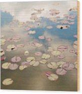 Water Lilies In Schoenbrunn Vienna Austria Wood Print