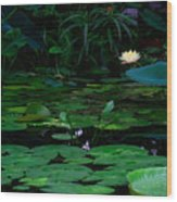 Water Lilies In The Pond Wood Print