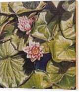 Water Lilies On The Ringdijk Wood Print