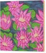 Water Lillies Wood Print