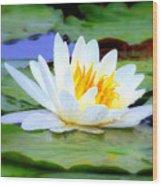 Water Lily - Digital Painting Wood Print