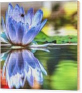 Water Lily And Bee Wood Print
