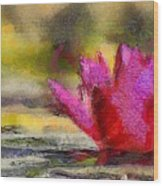 Water Lily - Id 16235-220419-3506 Wood Print