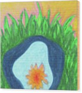 Water Lily In A Pond Wood Print