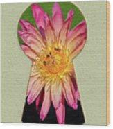 Water Lily Keyhole Wood Print