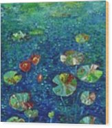 Water Lily Lotus Lily Pads Paintings Wood Print