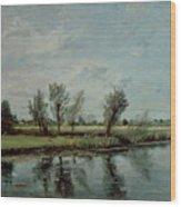 Water Meadows Near Salisbury Wood Print
