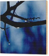 Water On Branch Wood Print