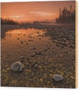Water On Mars Wood Print by Davorin Mance