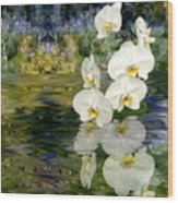 Water Orchid Wood Print