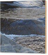 Water Ouzel, Middle Fork Kaweah River, Sequioa National Park Wood Print